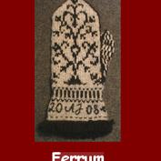 Ferrum  Materialsats till stickade vantar