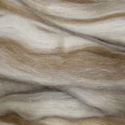 Spinn själv!  topsband av 100% ull, Blue Faced Leicester,  blandade naturfärger